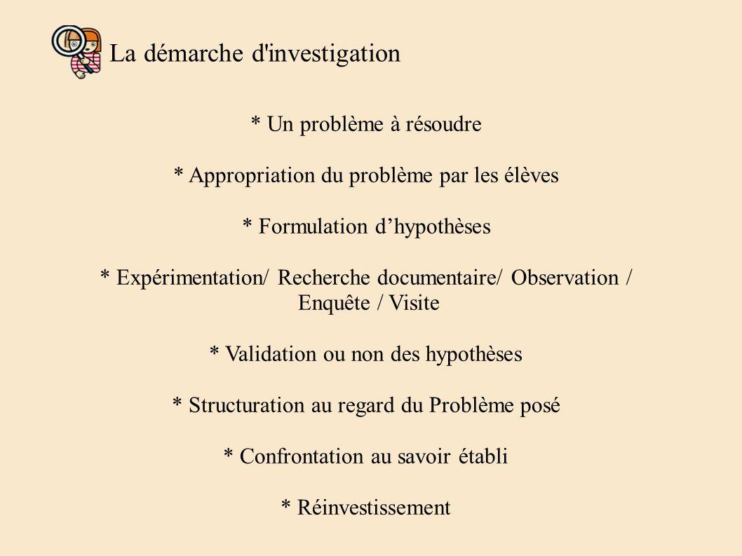 La démarche d investigation