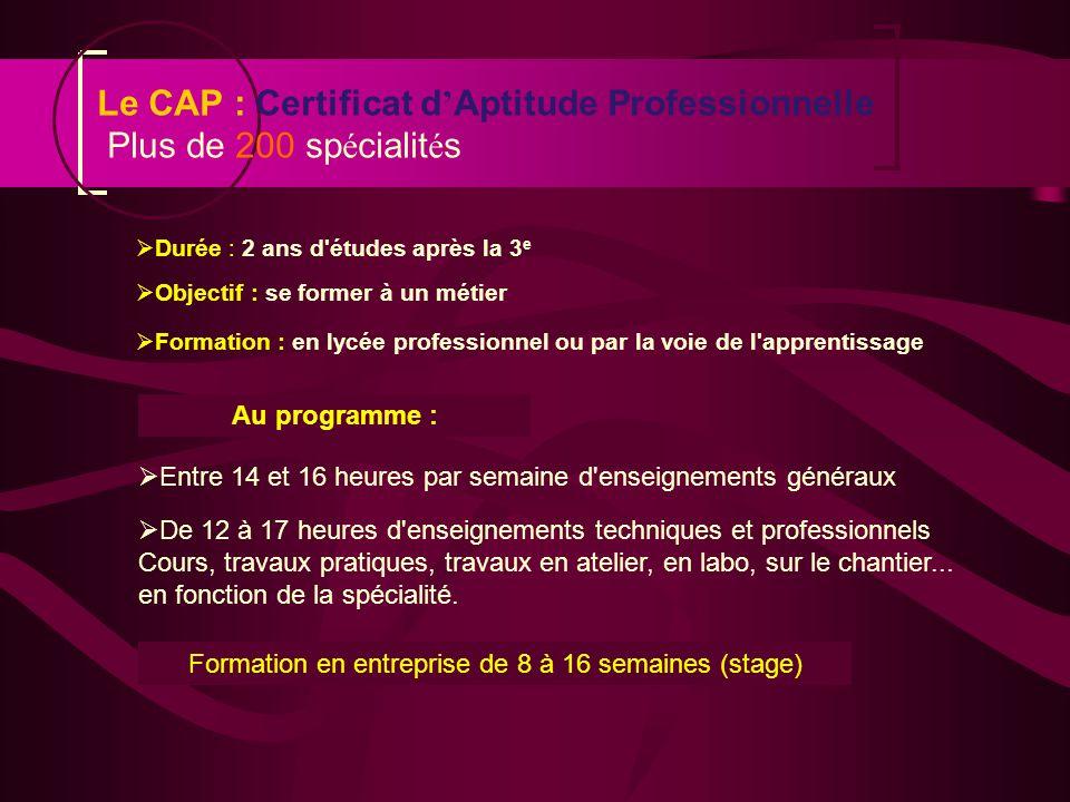 Le CAP : Certificat d'Aptitude Professionnelle Plus de 200 spécialités