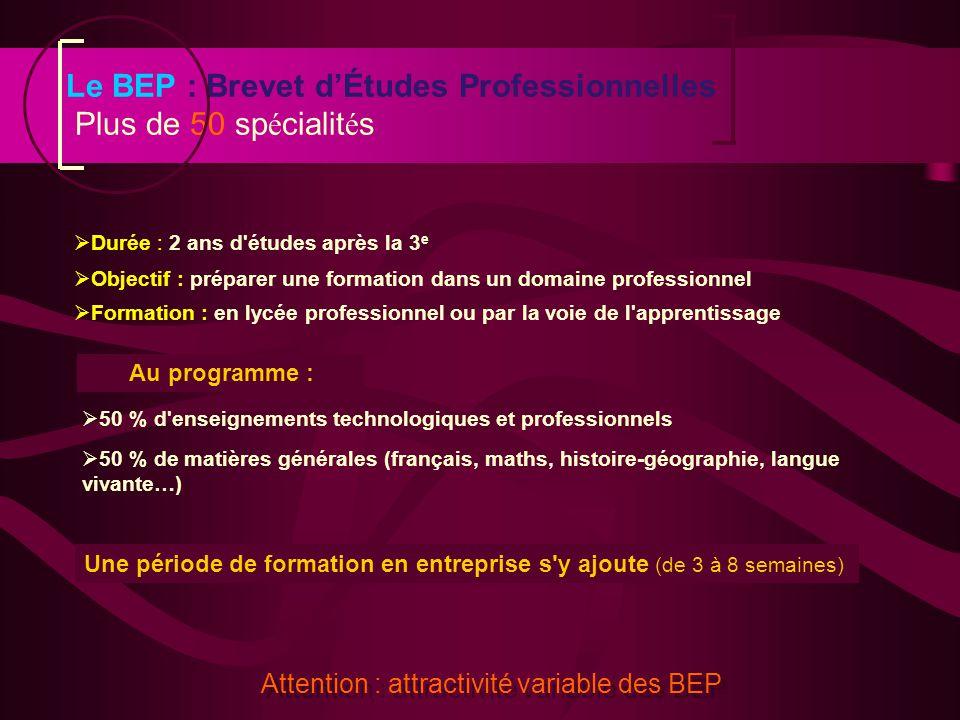 Le BEP : Brevet d'Études Professionnelles Plus de 50 spécialités