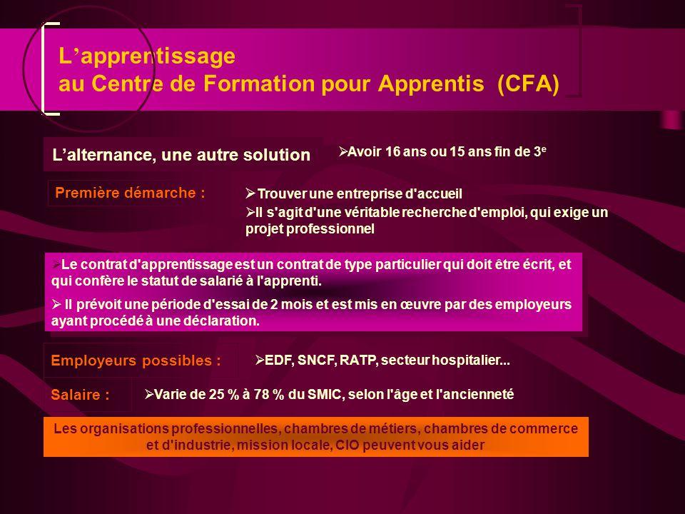 L'apprentissage au Centre de Formation pour Apprentis (CFA)