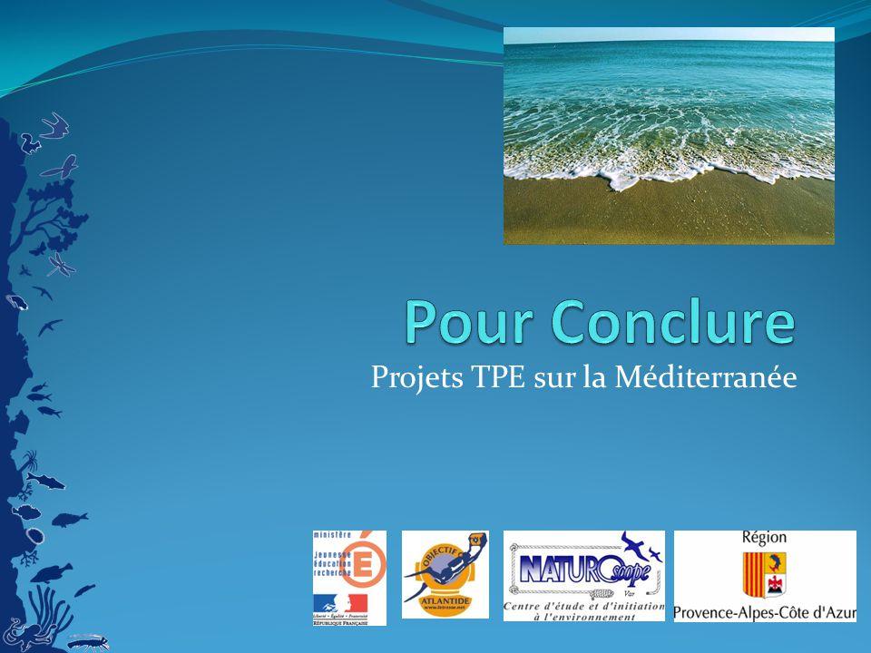 Projets TPE sur la Méditerranée