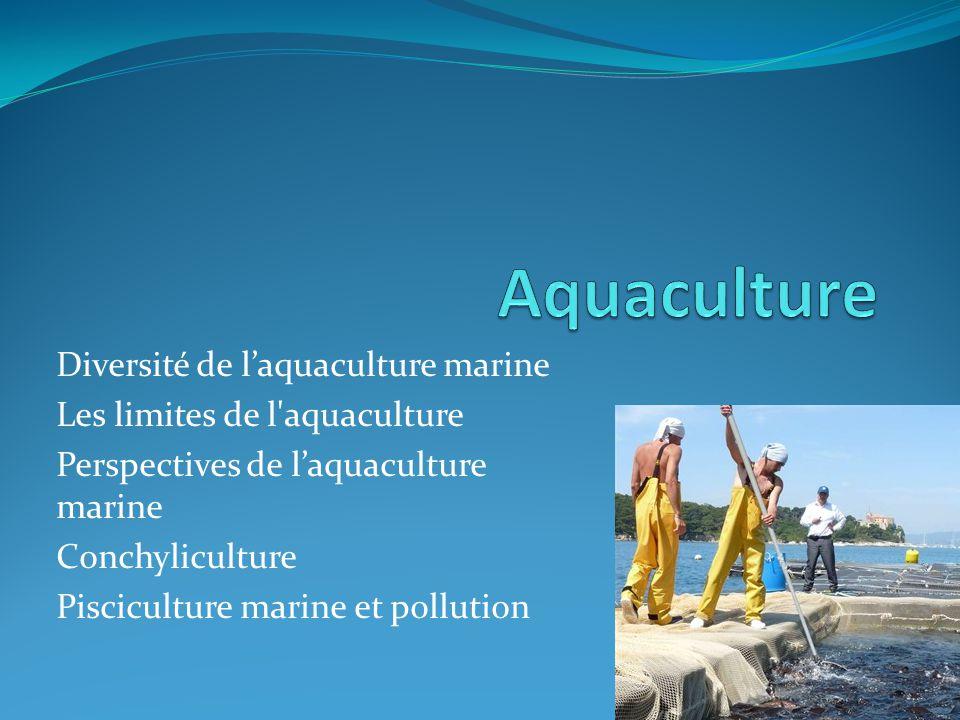 Aquaculture Diversité de l'aquaculture marine