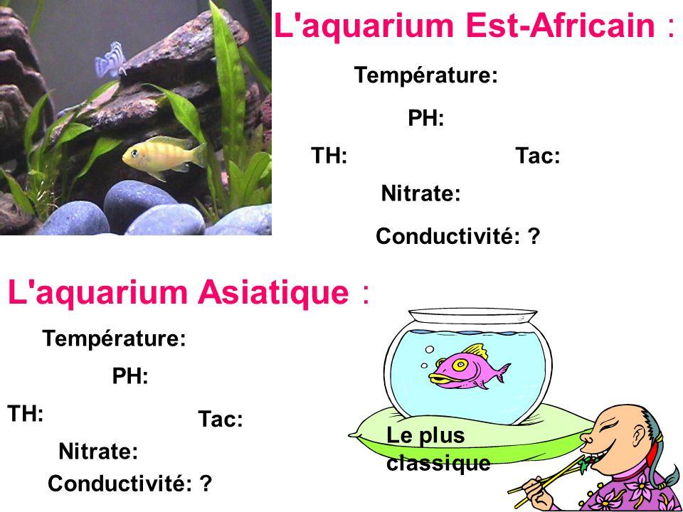 L aquarium Est-Africain :