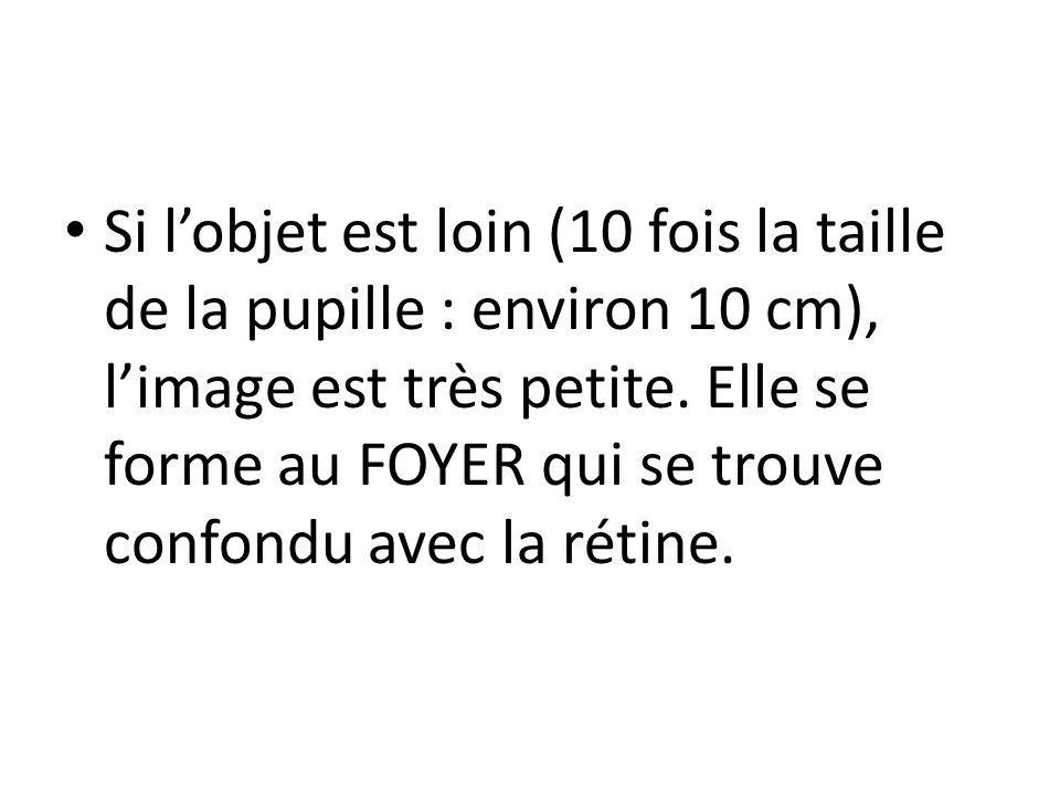 Si l'objet est loin (10 fois la taille de la pupille : environ 10 cm), l'image est très petite.