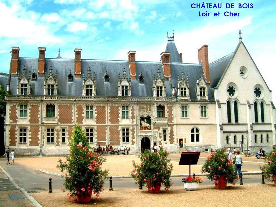 CHÂTEAU DE BOIS Loir et Cher