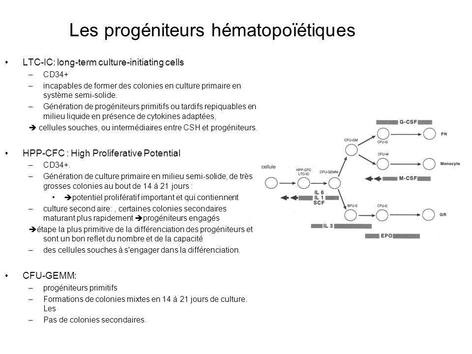 Les progéniteurs hématopoïétiques