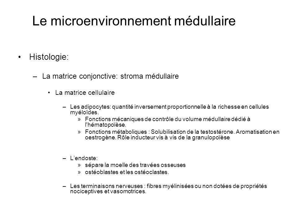 Le microenvironnement médullaire