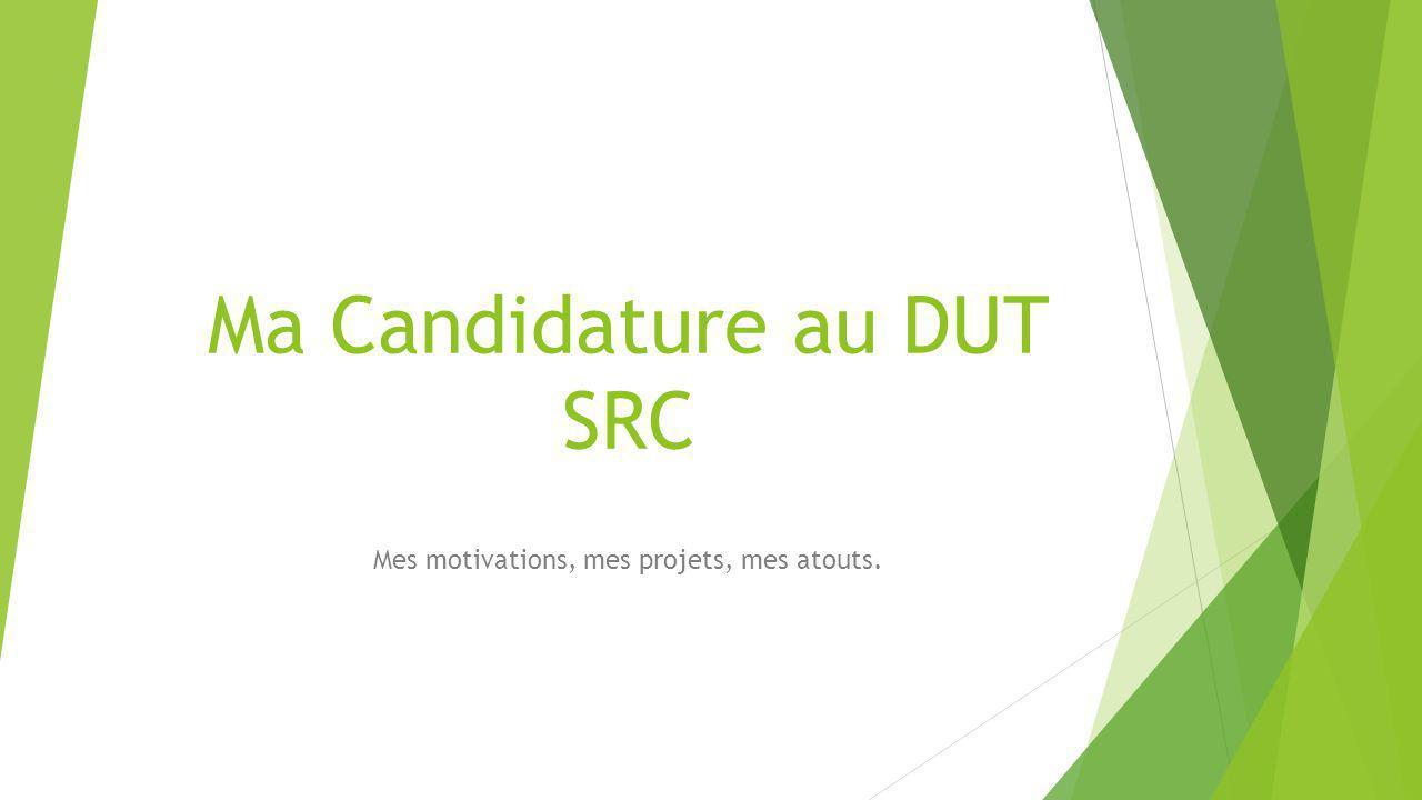 Ma Candidature au DUT SRC