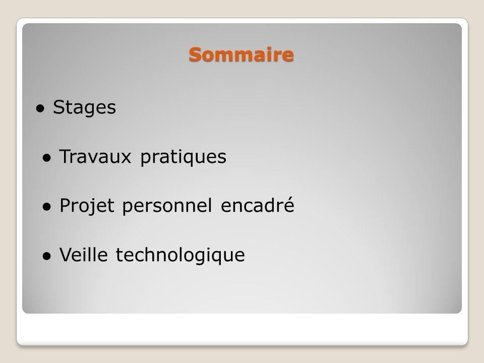 Sommaire ● Stages ● Travaux pratiques ● Projet personnel encadré ● Veille technologique