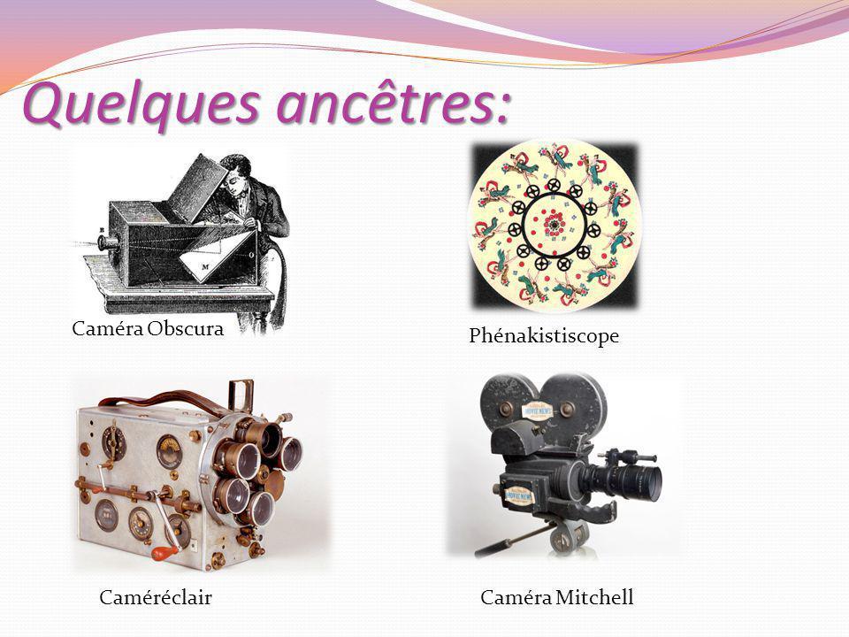 Quelques ancêtres: Caméra Obscura Phénakistiscope Caméréclair