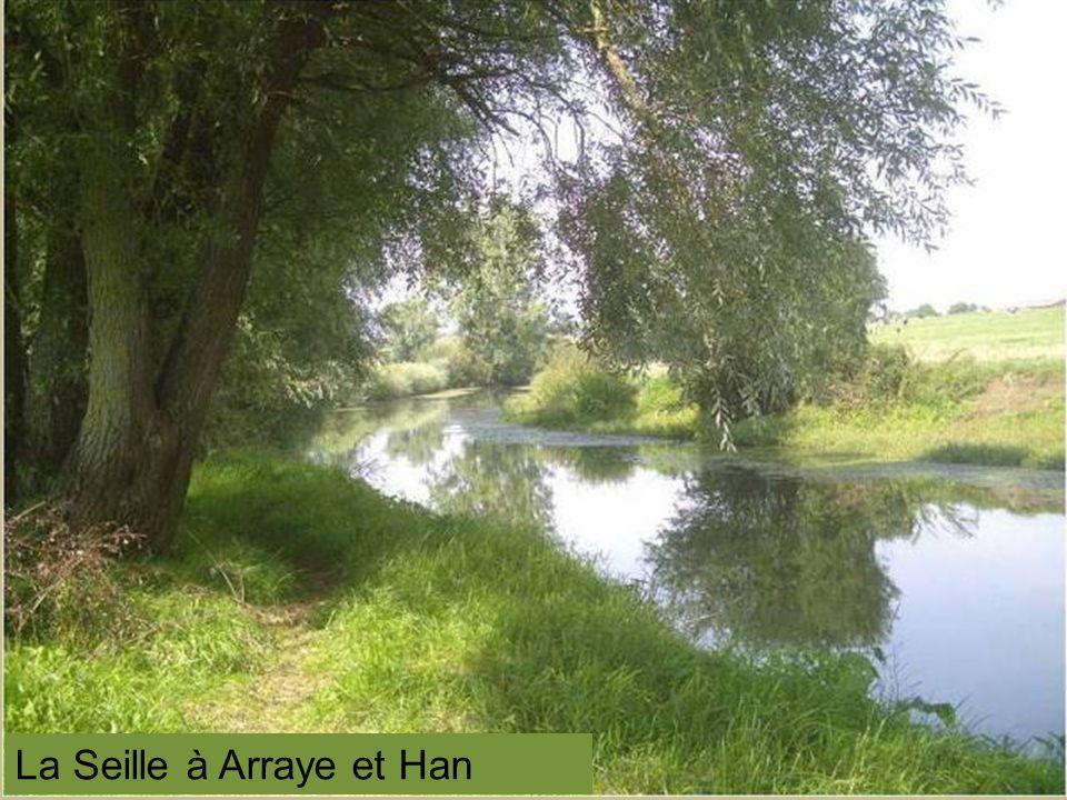 La Seille à Arraye et Han