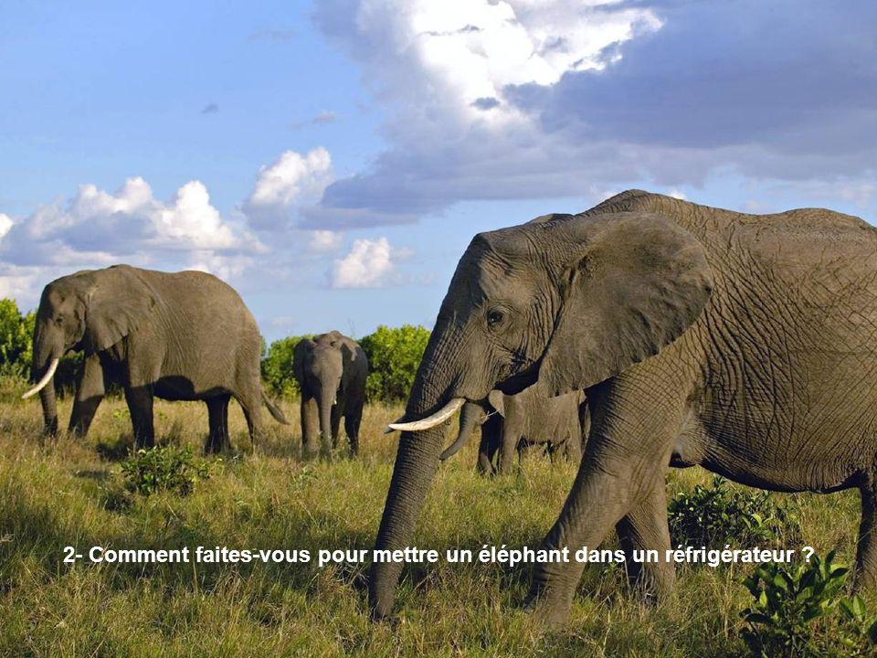2- Comment faites-vous pour mettre un éléphant dans un réfrigérateur