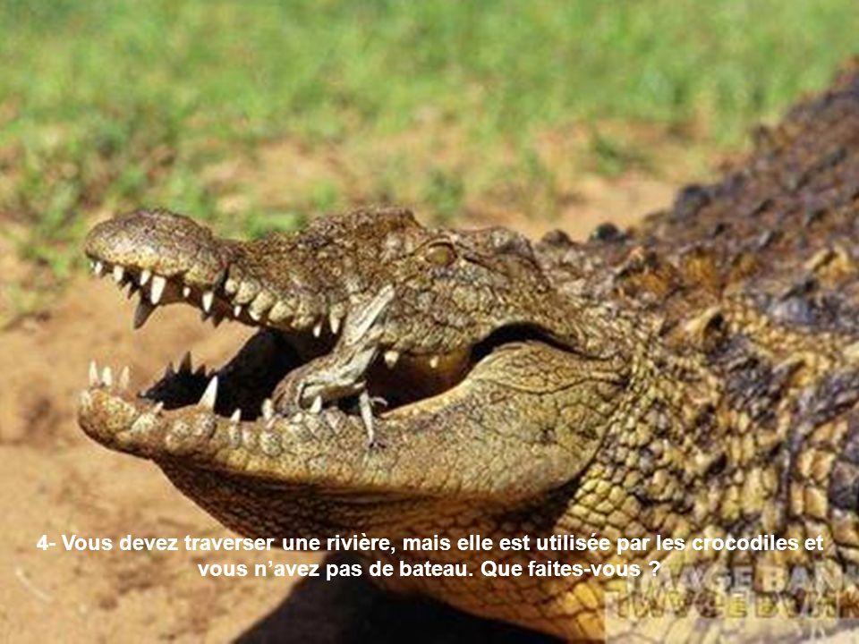 4- Vous devez traverser une rivière, mais elle est utilisée par les crocodiles et vous n'avez pas de bateau.
