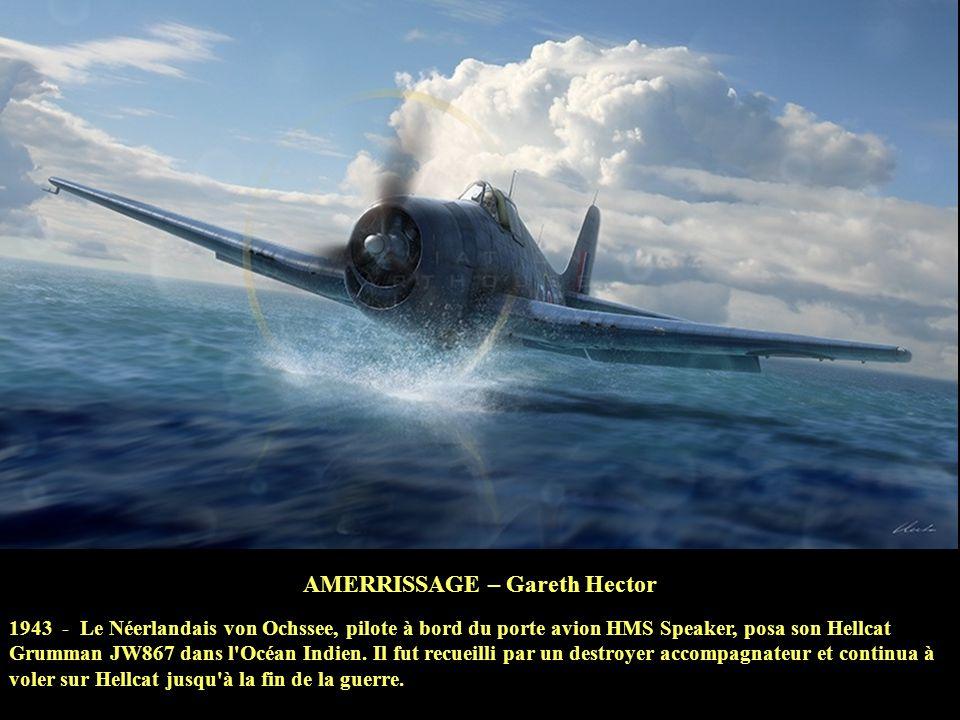 AMERRISSAGE – Gareth Hector