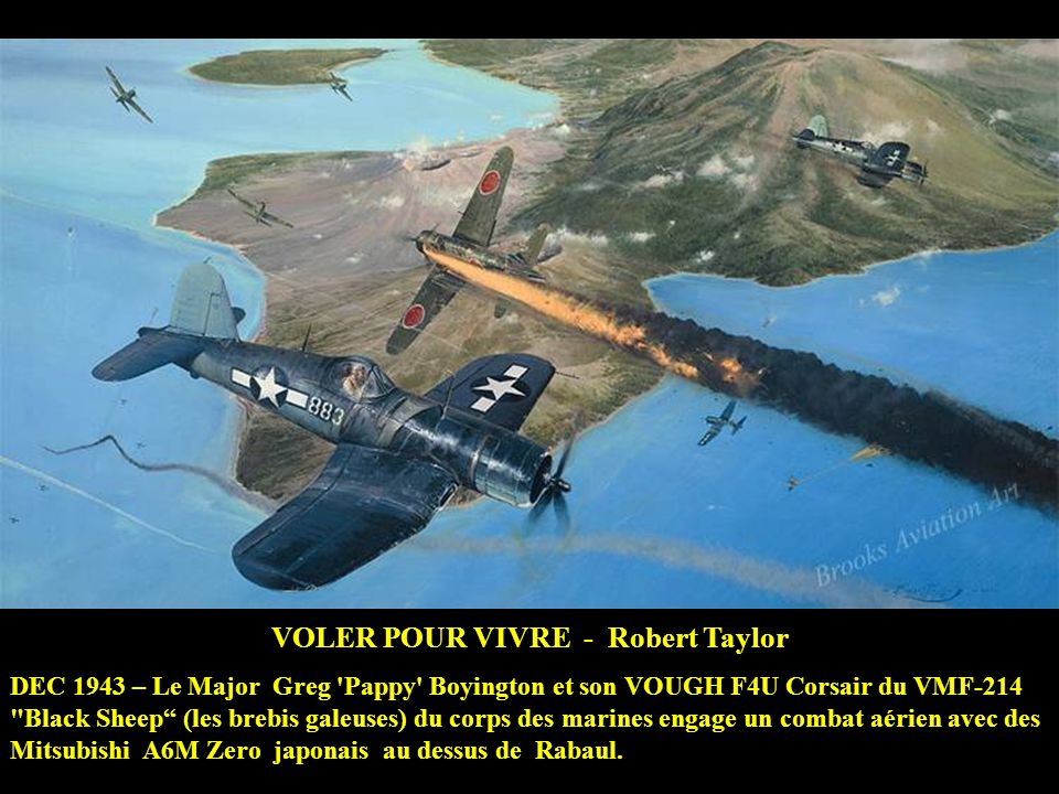 VOLER POUR VIVRE - Robert Taylor