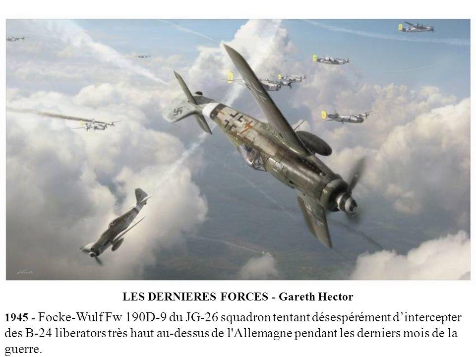 LES DERNIERES FORCES - Gareth Hector