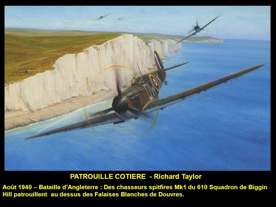 PATROUILLE COTIERE - Richard Taylor