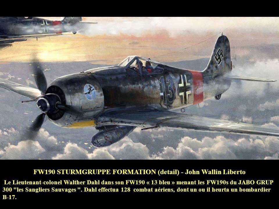 FW190 STURMGRUPPE FORMATION (detail) - John Wallin Liberto