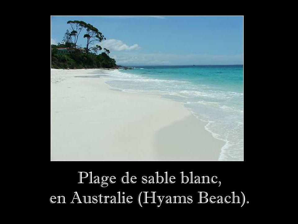 en Australie (Hyams Beach).