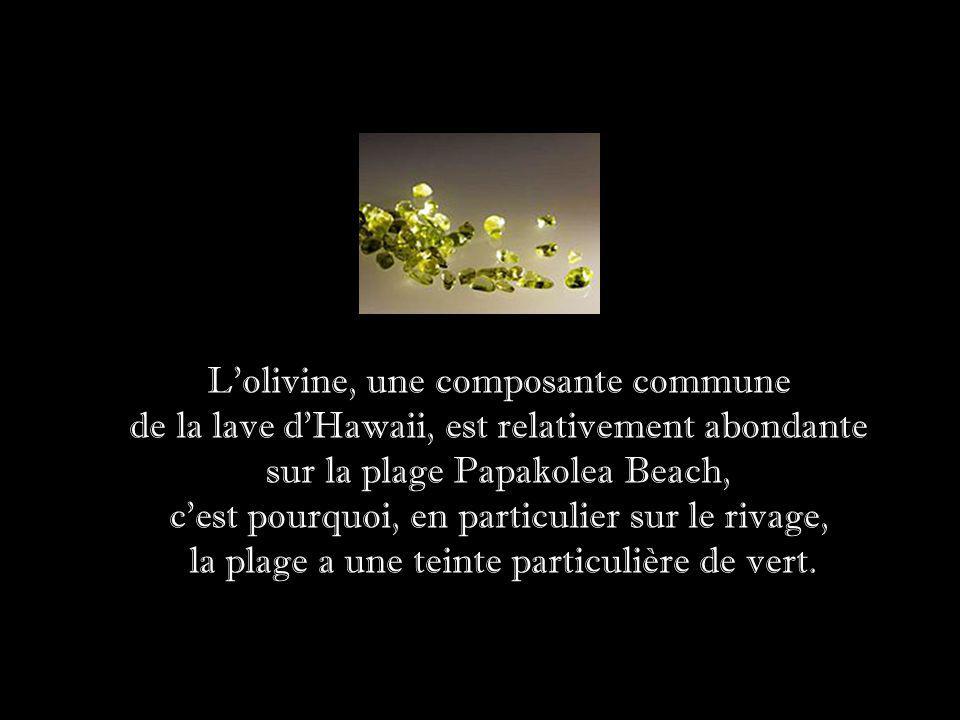 L olivine, une composante commune