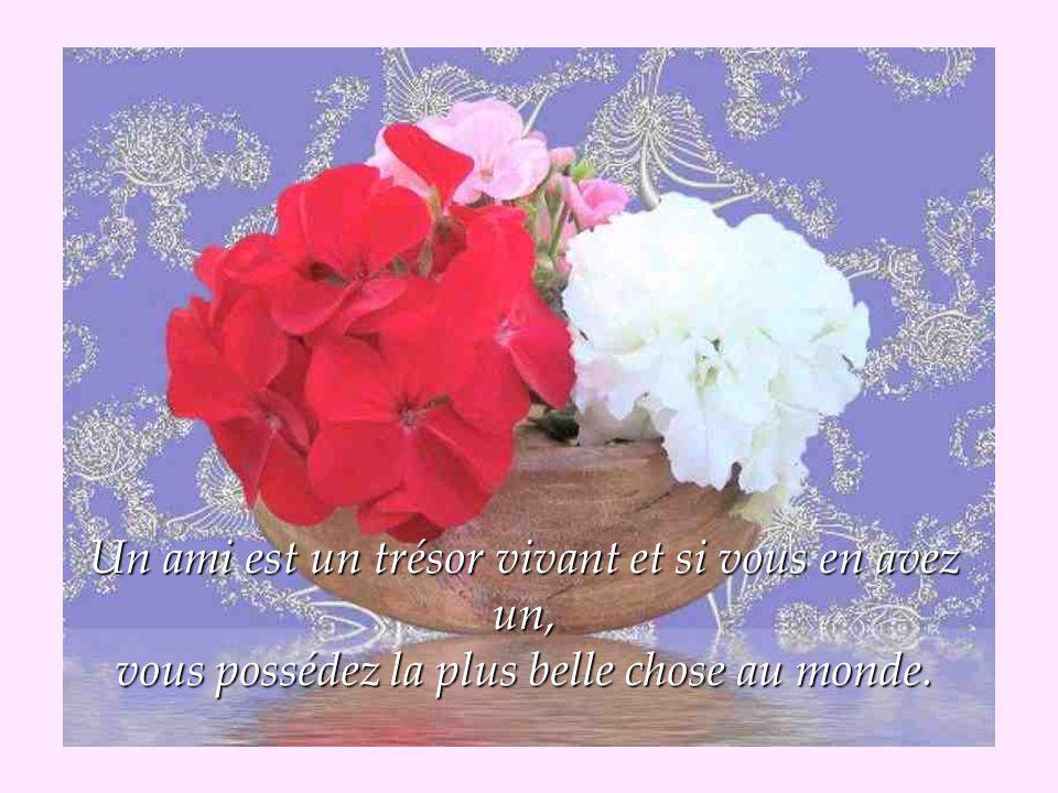 Un ami est un trésor vivant et si vous en avez un, vous possédez la plus belle chose au monde.