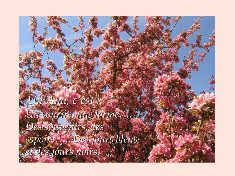 Un Ami, c'est : Un sourire, une larme…. Des souvenirs, des espoirs…..
