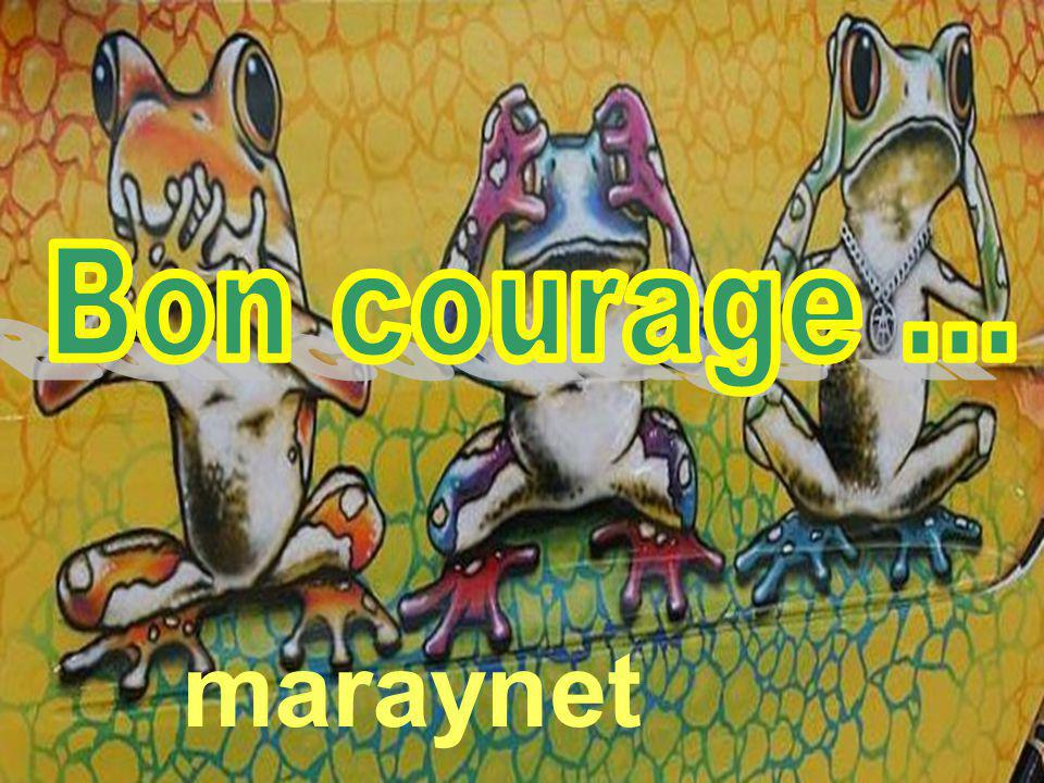 Bon courage ... maraynet