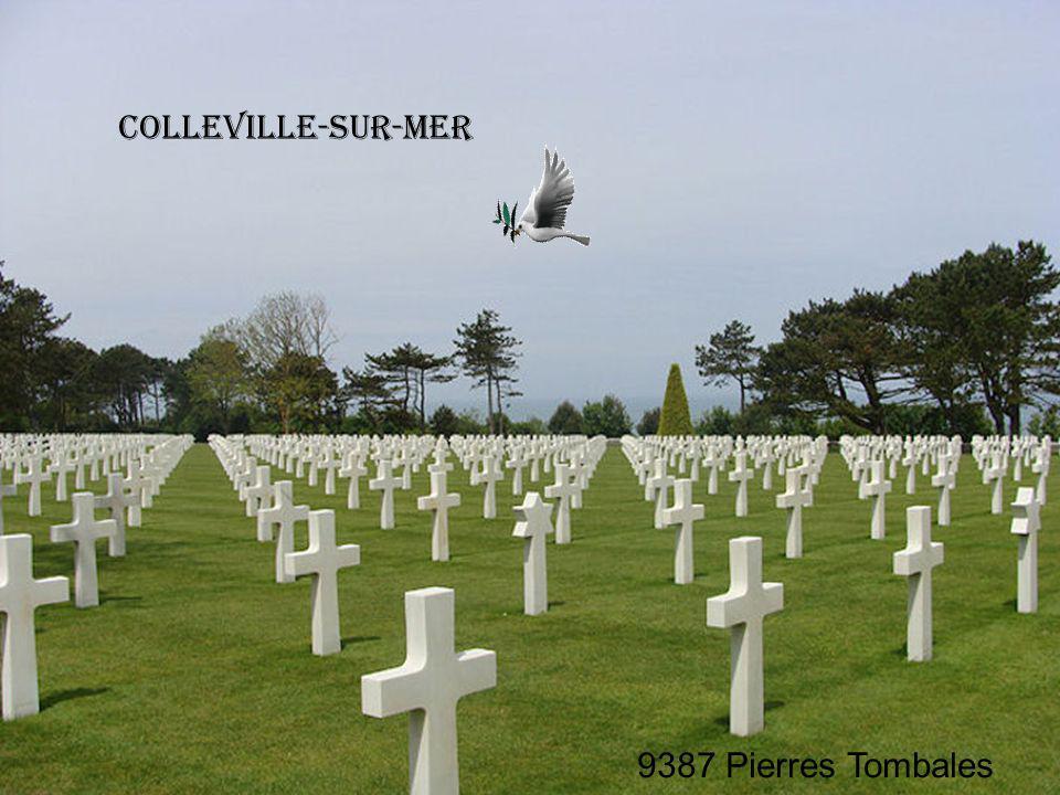Colleville-sur-Mer 9387 Pierres Tombales