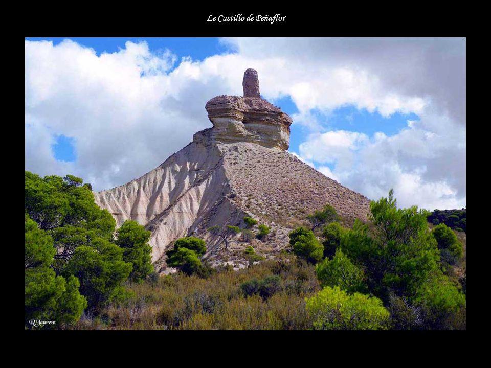 Le Castillo de Peñaflor
