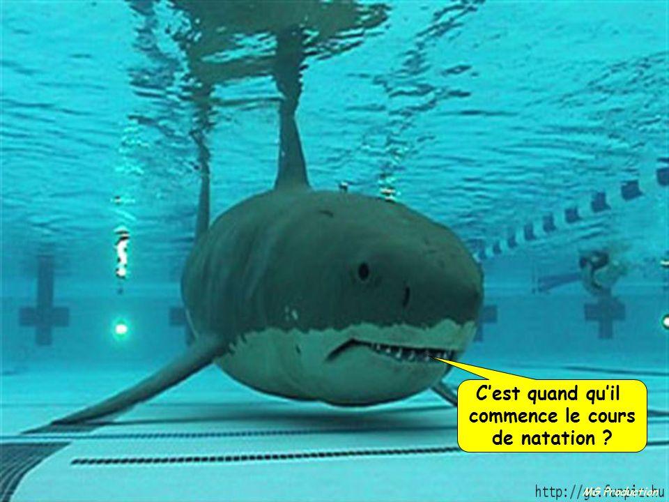 C'est quand qu'il commence le cours de natation