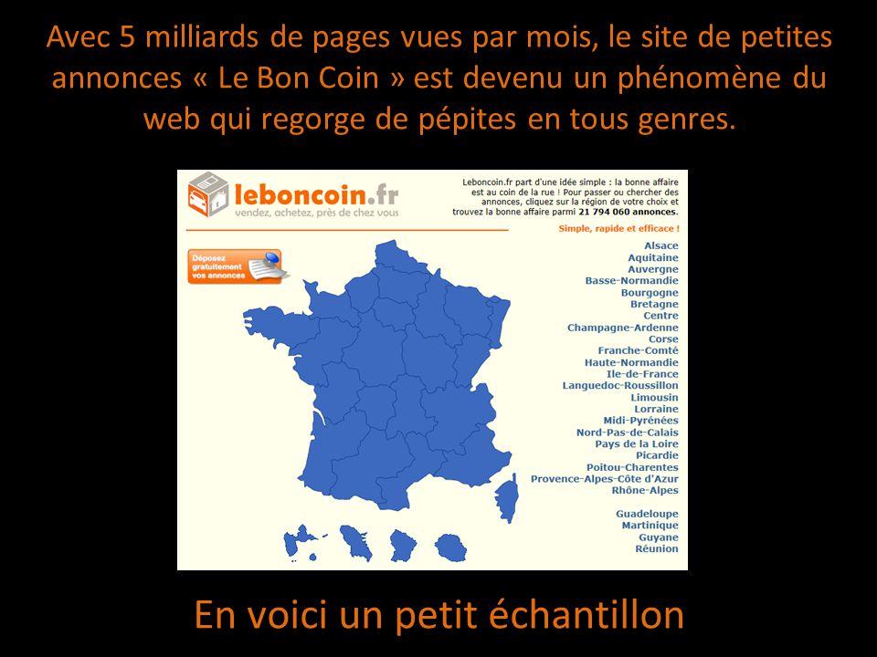 Avec 5 milliards de pages vues par mois, le site de petites annonces « Le Bon Coin » est devenu un phénomène du web qui regorge de pépites en tous genres.