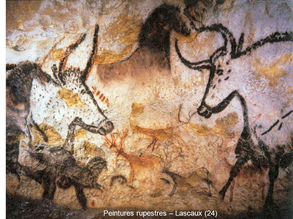 Peintures rupestres – Lascaux (24)