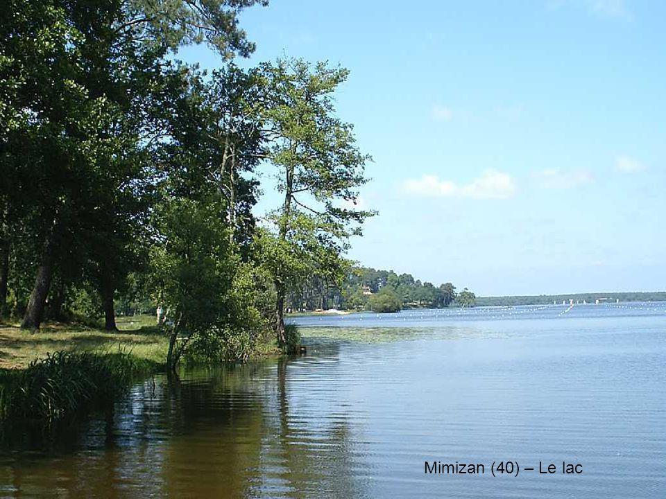 Mimizan (40) – Le lac