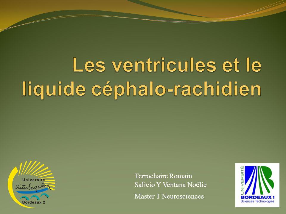 Les ventricules et le liquide céphalo-rachidien