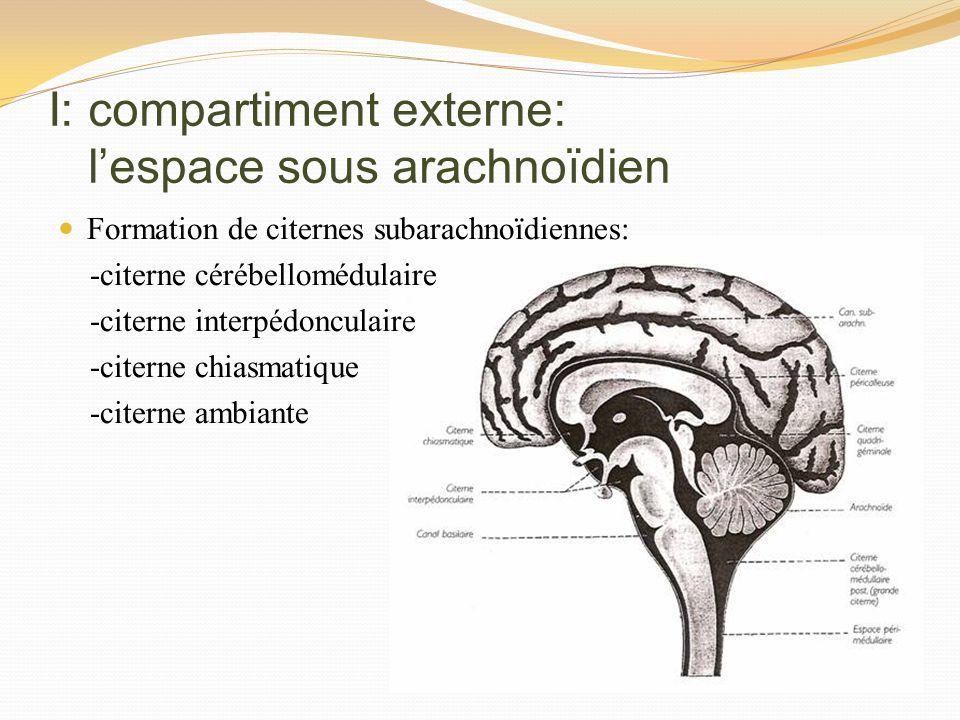 I: compartiment externe: l'espace sous arachnoïdien