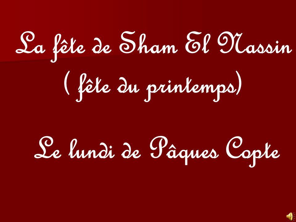 La fête de Sham El Nassin