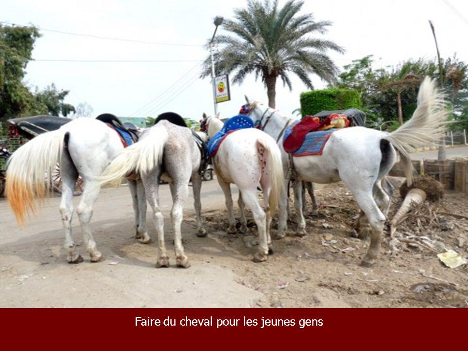 Faire du cheval pour les jeunes gens