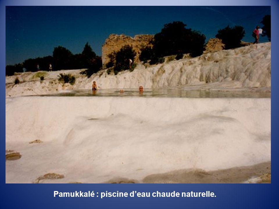 Pamukkalé : piscine d'eau chaude naturelle.