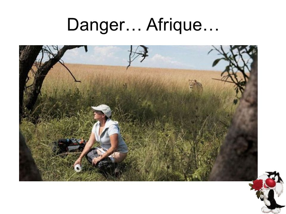 Danger… Afrique…