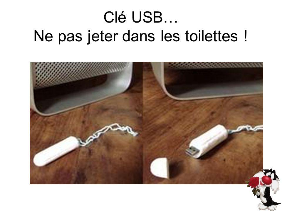 Clé USB… Ne pas jeter dans les toilettes !