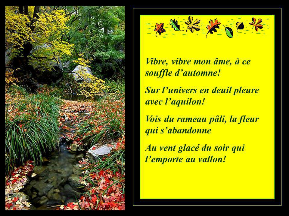 Vibre, vibre mon âme, à ce souffle d'automne!