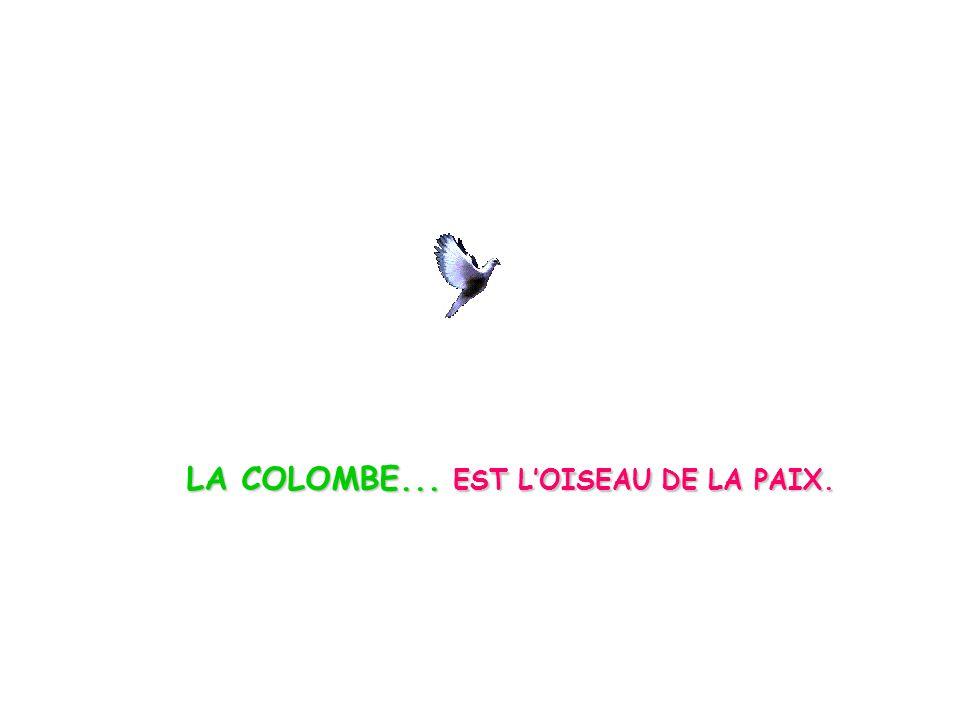 LA COLOMBE... EST L'OISEAU DE LA PAIX.