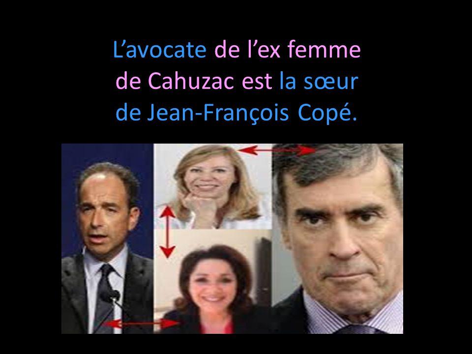 L'avocate de l'ex femme de Cahuzac est la sœur de Jean-François Copé.