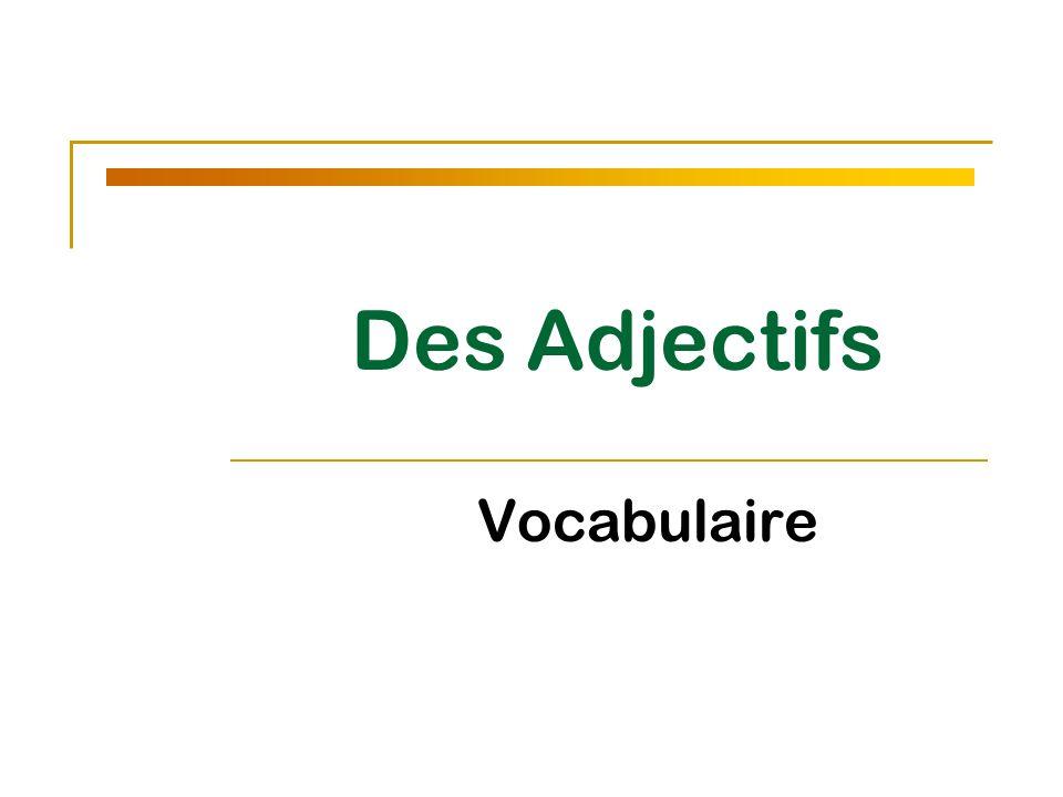 Des Adjectifs Vocabulaire