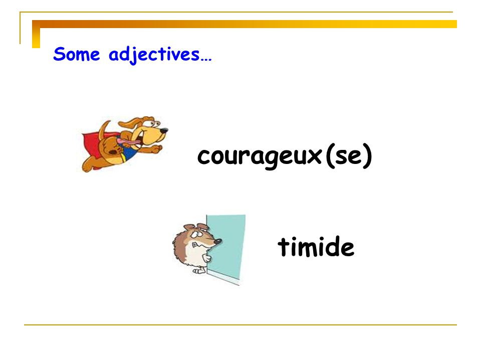 Some adjectives… courageux (se) timide