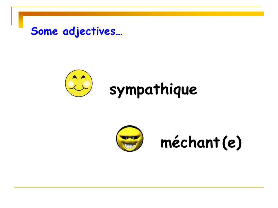 Some adjectives… sympathique méchant (e)