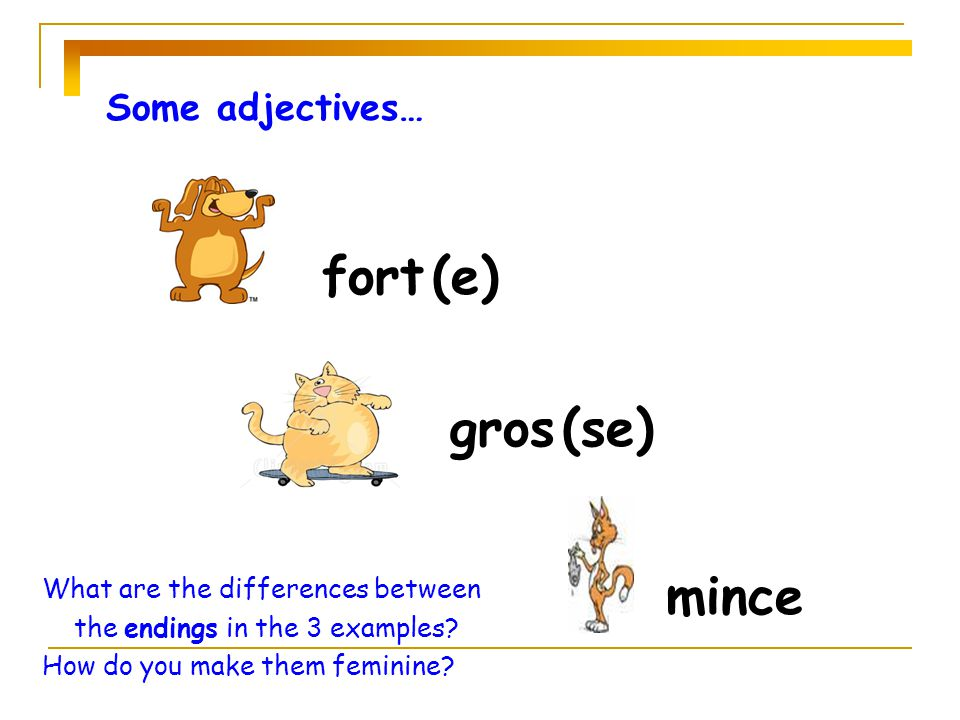 fort (e) gros (se) mince Some adjectives…