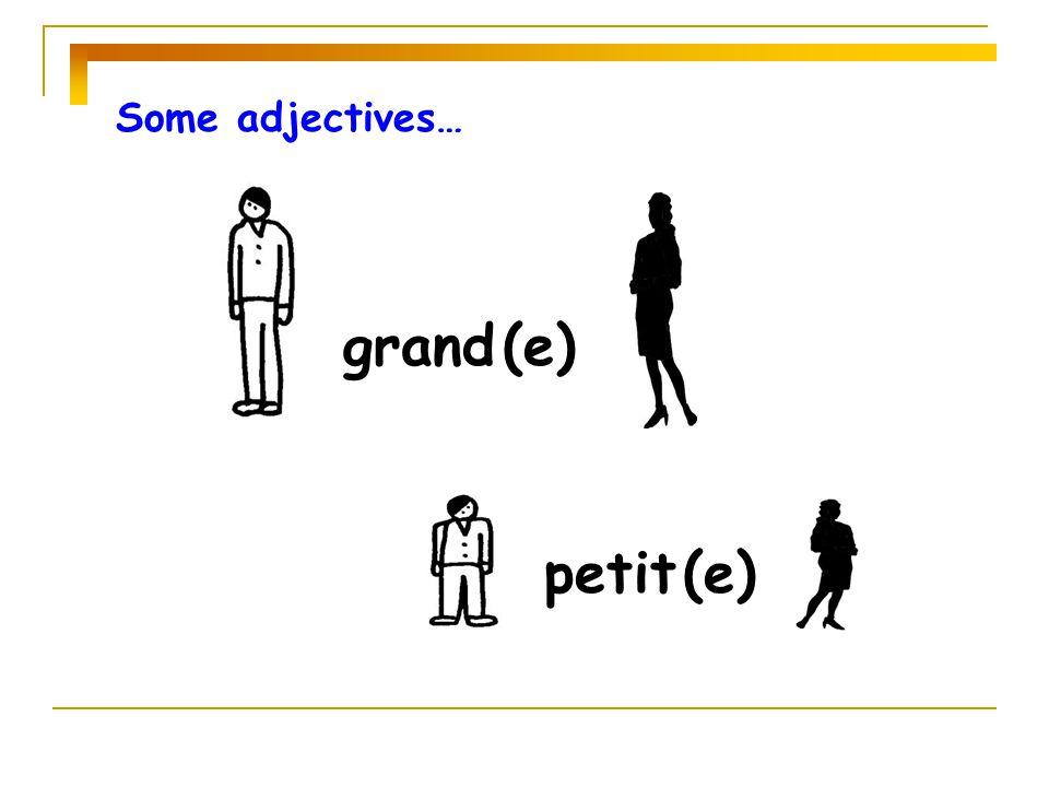 Some adjectives… grand (e) petit (e)