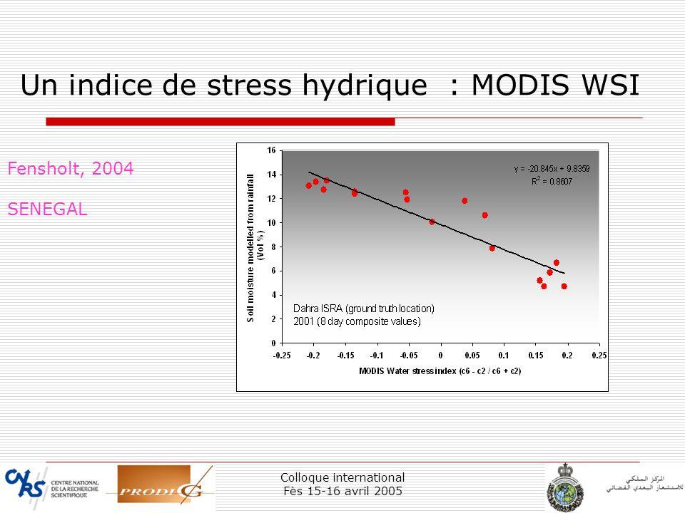 Un indice de stress hydrique : MODIS WSI