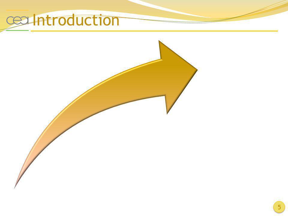 Introduction 5 Electrogreffage de sels d'aryldiazonium